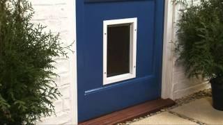 porte pour chatiere khenghua. Black Bedroom Furniture Sets. Home Design Ideas