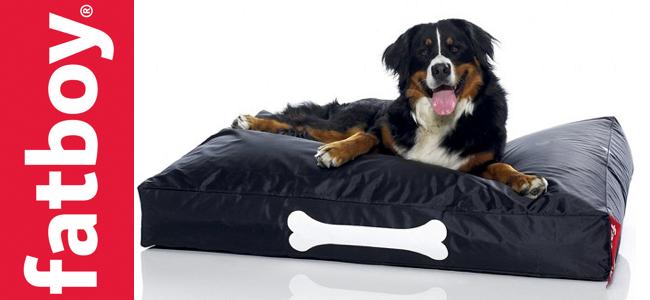 tapis chien resistant khenghua. Black Bedroom Furniture Sets. Home Design Ideas