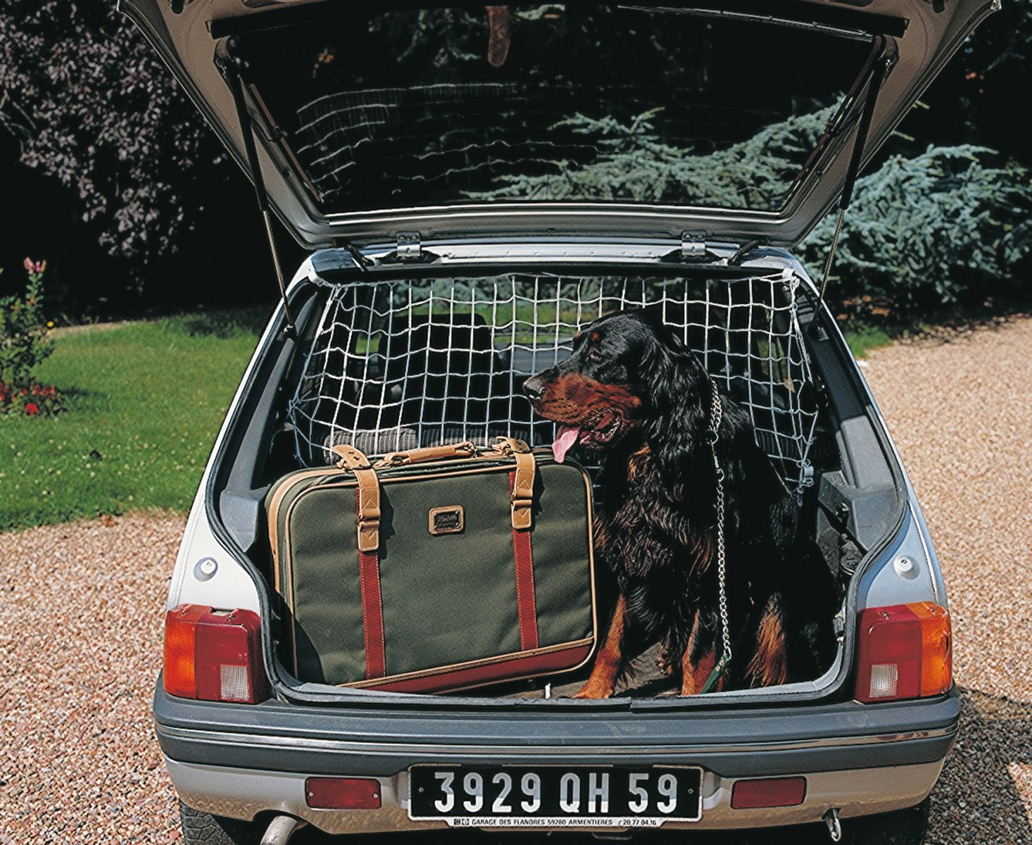 grille voiture pour chien khenghua. Black Bedroom Furniture Sets. Home Design Ideas