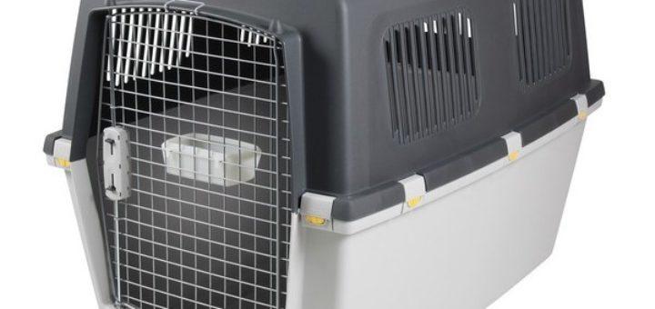 cage pour grand chien pas cher khenghua. Black Bedroom Furniture Sets. Home Design Ideas