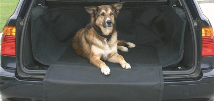 Protection de coffre pour chien khenghua for Housse protection coffre chien