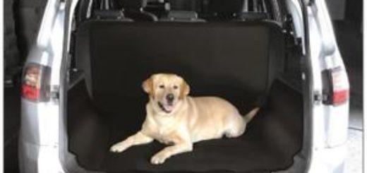 caisse de transport chien pas cher khenghua. Black Bedroom Furniture Sets. Home Design Ideas